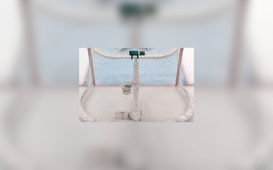 Ledo ritulio vartai