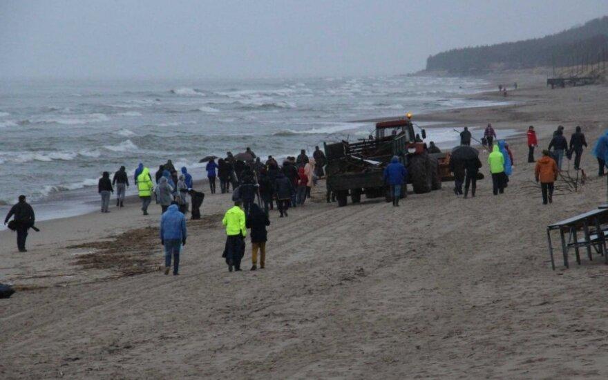 Talka Klaipėdos paplūdimiuose