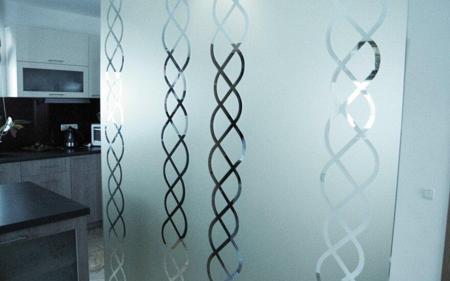 Stiklas interjere: kaip dušo kabiną paversti SPA oaze ir kitos gudrybės