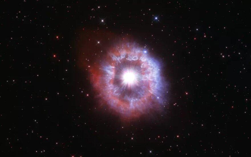 Supernovos sprogimas. NASA, ESA, STScI/The University of Hong Kong nuotr.
