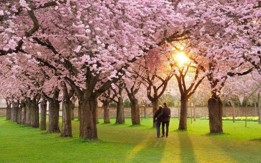 Astrologės Lolitos prognozė gegužės 12 d.: meilei ir kelionėms palanki diena