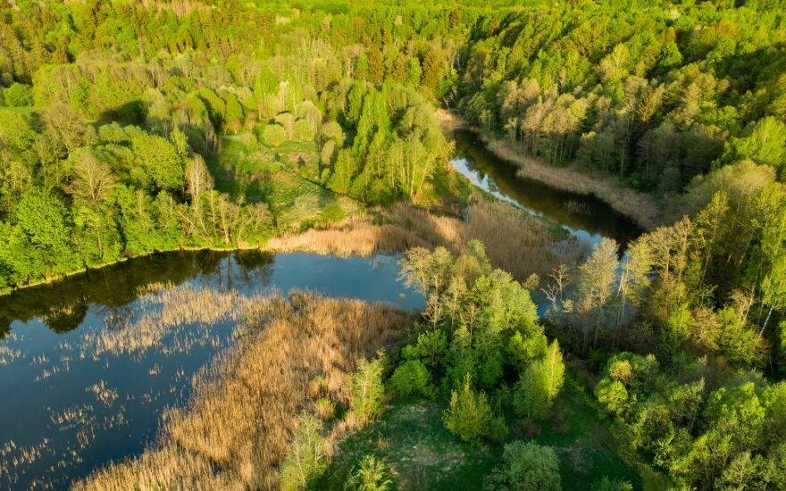 Parama padėjo įkurti svajonių verslą gamtos oazėje
