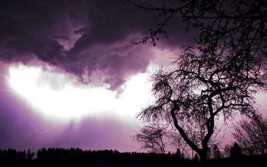 Trenkus žaibui žuvo visa šeima