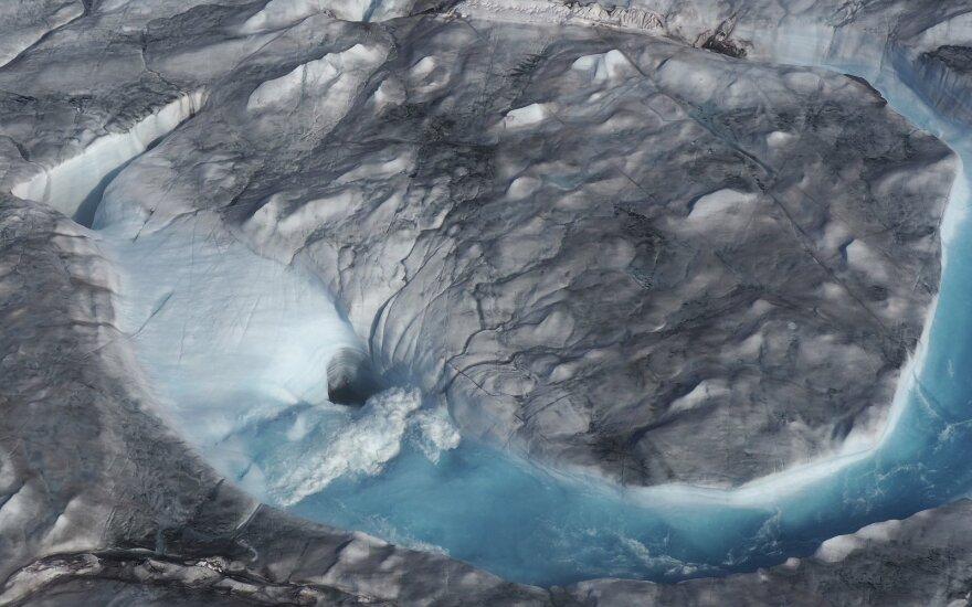 Tirpstantis ledas Arktyje
