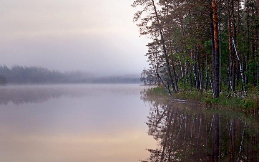 Praviršulio ežero pakrantė
