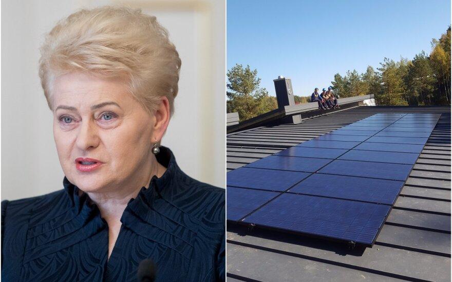D. Grybauskaitės saulės elektrinė