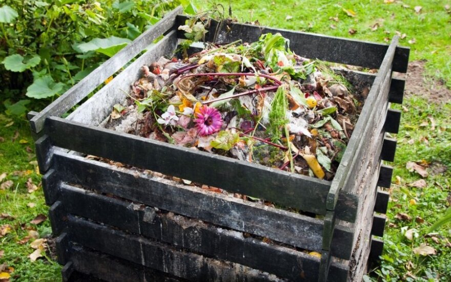 Trąšos, kurios nieko nekainuos: patarimai, kaip kompostuoti