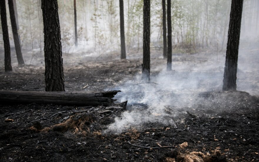 Dega miškas