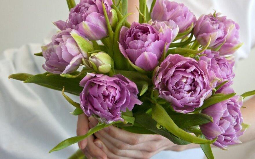 Gėlės – lyg simboliai: kokią puokštę pasirinkti?