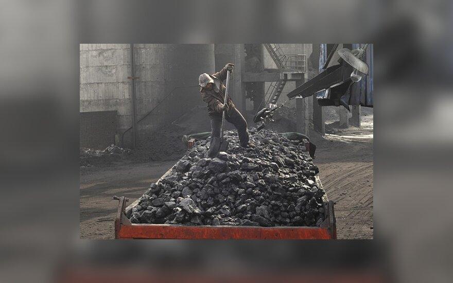 Vokietijos komisaras tikisi EP narių paramos pratęsiant subsidijas anglies kasykloms
