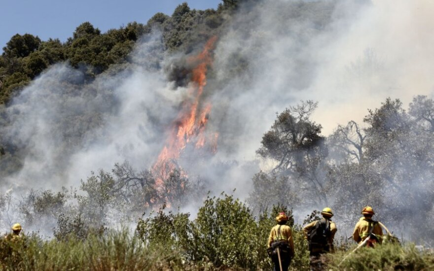 Miško gaisras Kalifornijoje