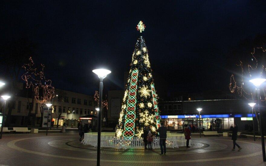 Palangos Kalėdų eglė šiemet stovės kitoje vietoje