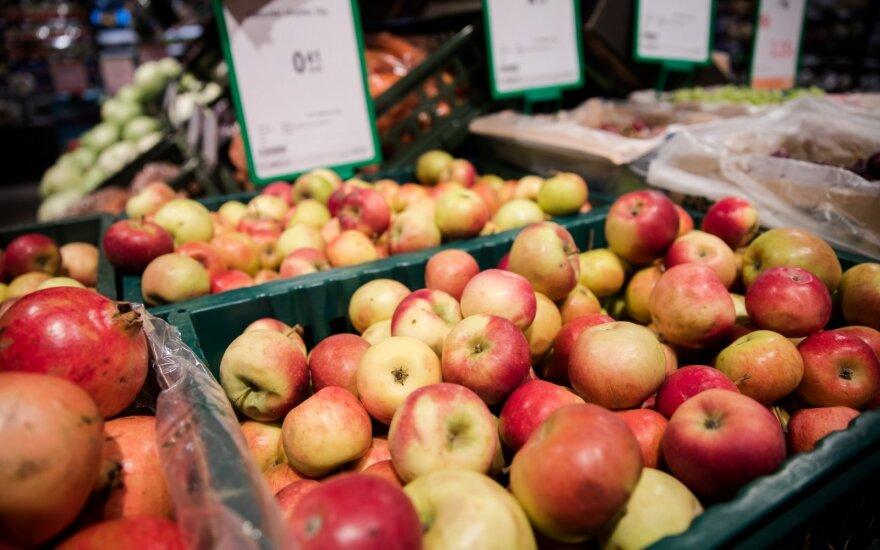 Paskelbė obuolių derliaus prognozes Europoje ir Lietuvoje