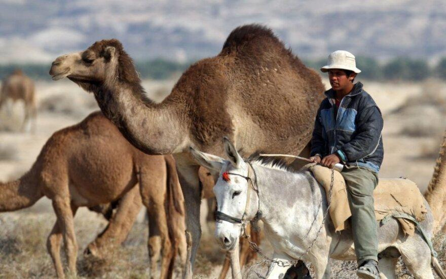 Beduinas