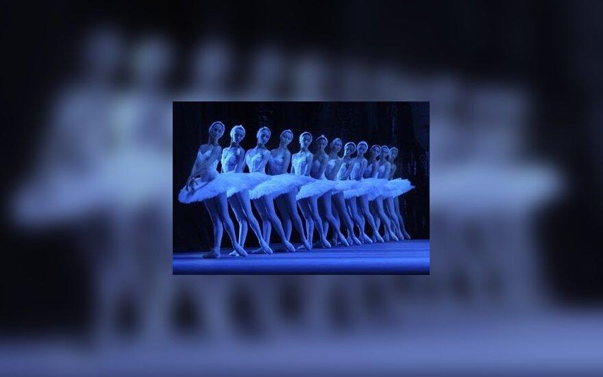 Kultūros ministre Lietuvoje galėtų tapti ir balerina?