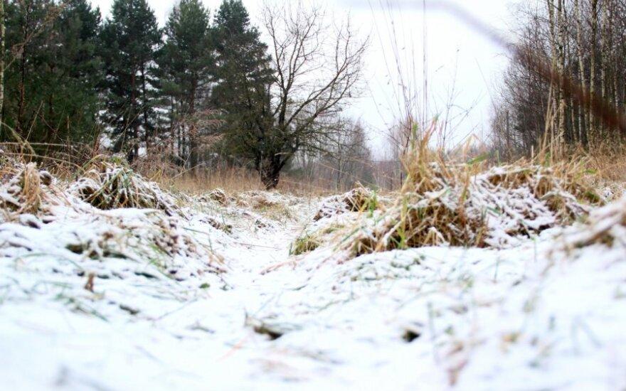 Sniego meldžia net ir baidarių nuomotojai