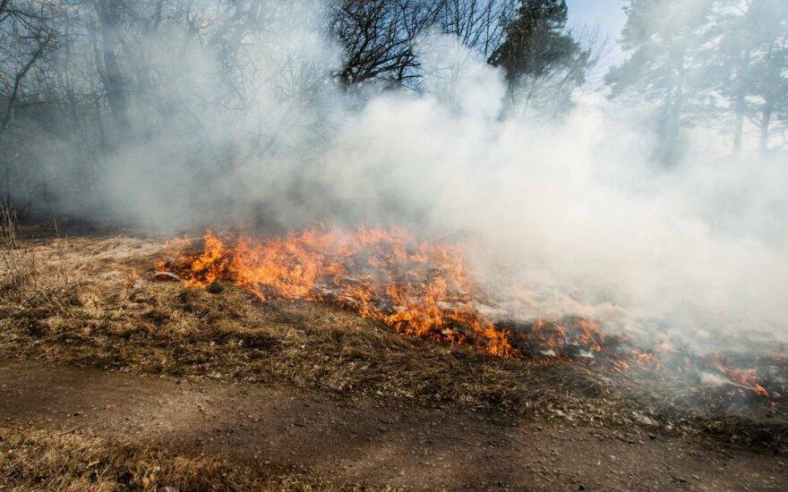 Prie sudegusio namo ugniagesiai rado šoko ištiktą moterį, o gaisravietėje – apdegusius palaikus