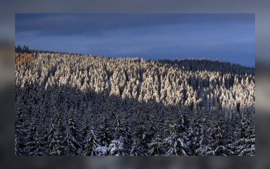 Baudos ratus sukusi Lietuvos atstovė aplenkė vos kelias varžoves