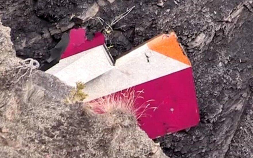 """Lietuvis pilotas apie """"Germanwings"""" nelaimę: tai buvo """"vidinis teroro aktas"""""""