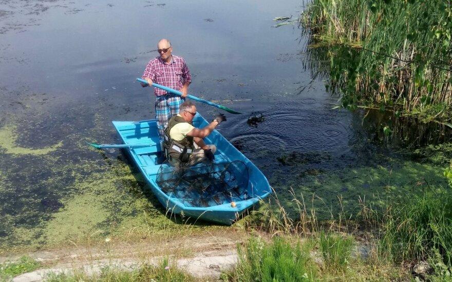 Aplinkos apsaugos inspektoriai su ežere rastais venteriais