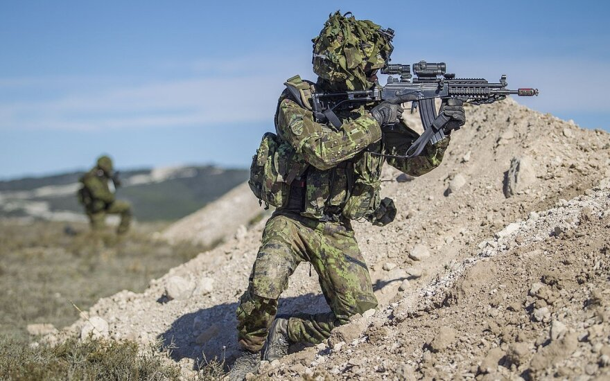 Estijos karys