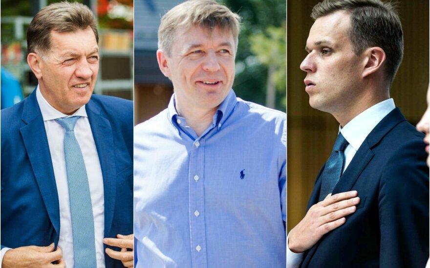 Algirdas Butkevičius, Ramūnas Karbauskis, Gabrielius Landsbergis