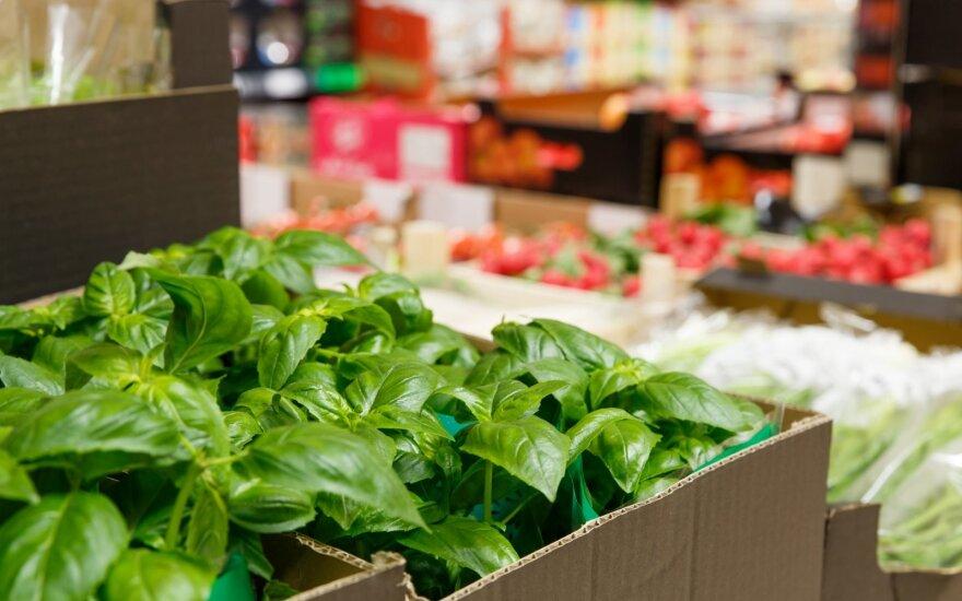 Daržovių ir vaisių kelias į Lidl parduotuves