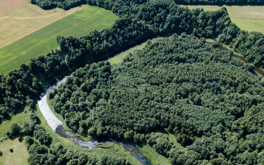 Minint Europos parkų dieną, gyventojai kviečiami laiką leisti gamtoje
