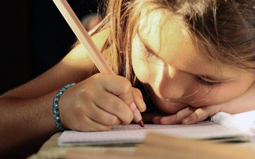 Namuose dukrą mokiusios mamos verdiktas: mokykloje - šiltnamio sąlygos