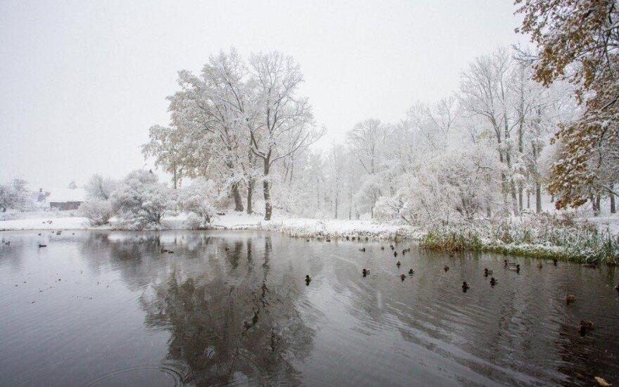Pirmas sniegas Latvijoje