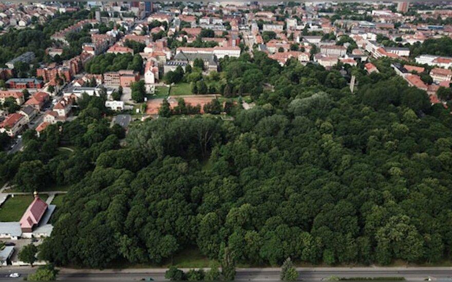 Klaipėdiečiai sunerimę: Skulptūrų parke grius 500 medžių