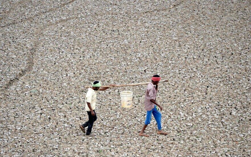 Sausra paralyžiavo Tamilnado valstiją Indijoje