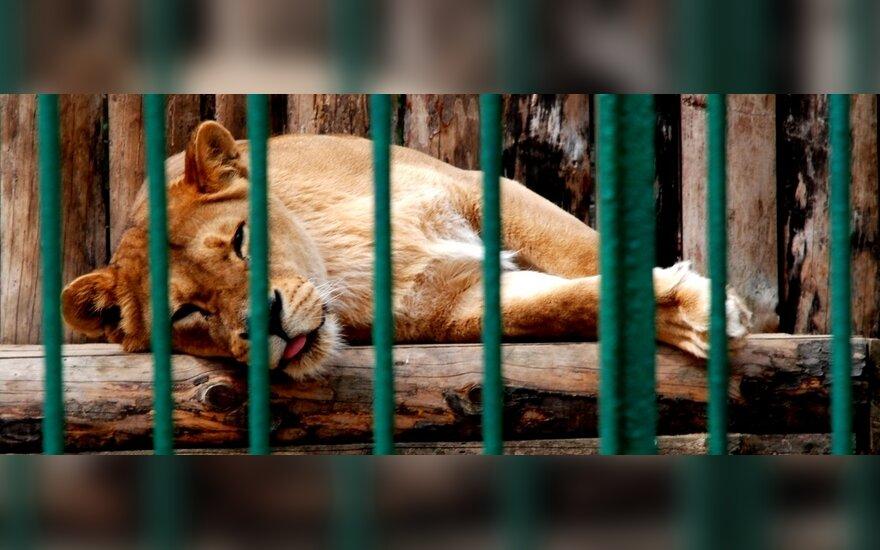Lietuva gali prarasti zoologijos sodus