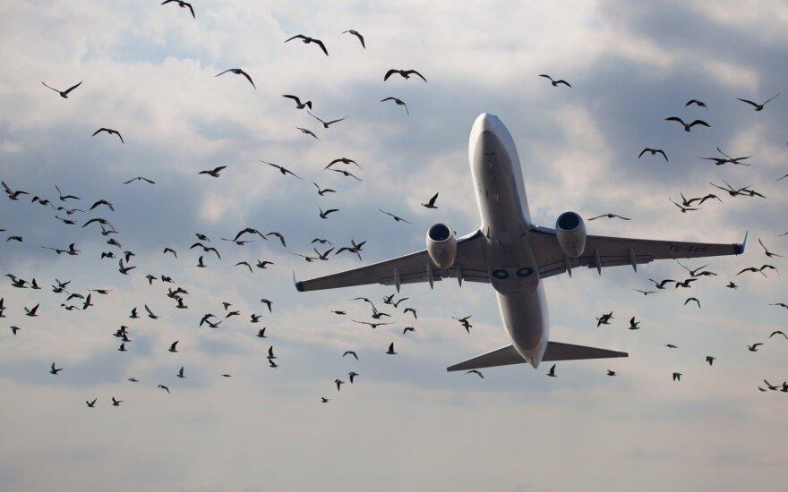 Ilgiausių skrydžių TOP 5