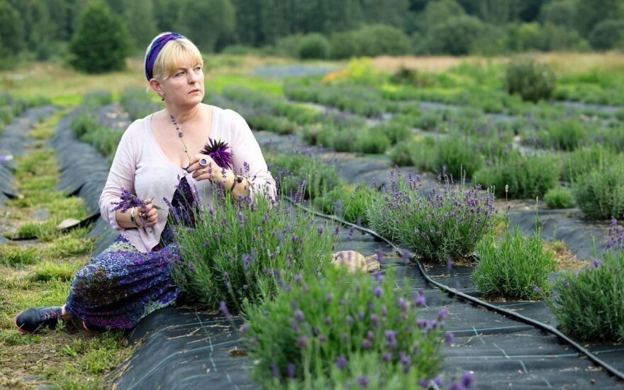 Šalčininkų kaime gėlių laukai primena Provansą