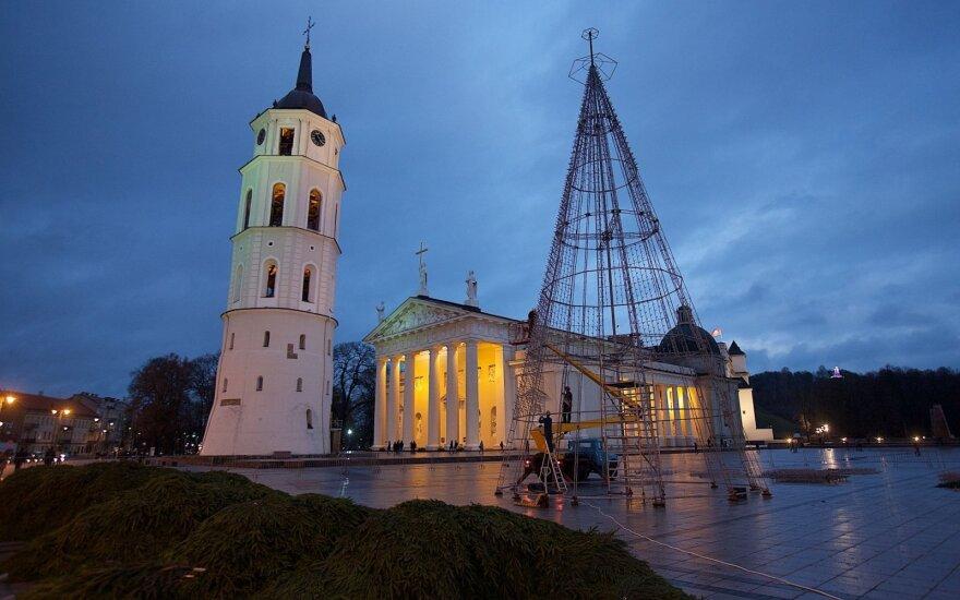 Vilniaus Katedros aikštėje puošiama eglutė