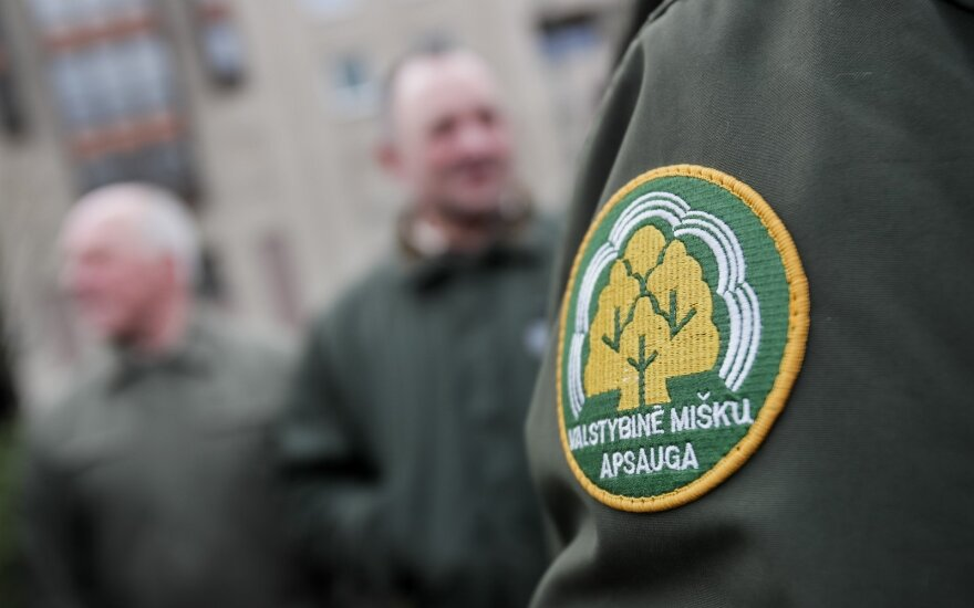 Valstybinė miškų urėdija pradeda 26 padalinių vadovų paiešką
