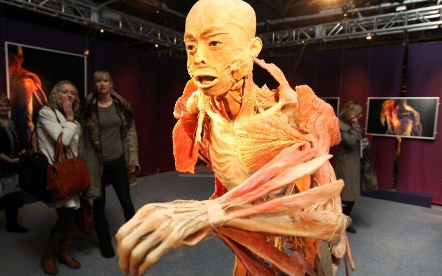"""Nuomonė. """"The Human Body Exhibition"""" – nužmogėjimo ir nužmoginimo šou"""