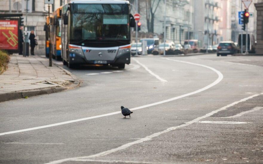 Sostinės viešojo transporto pavasarį laukia pokyčiai