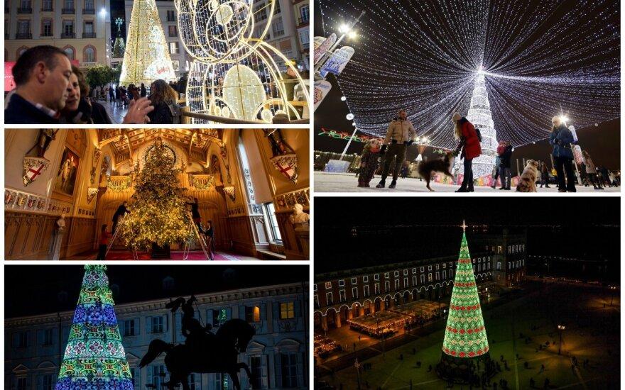 Kalėdų eglės Europoje