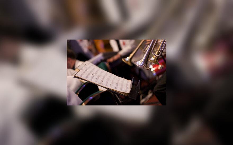Muzika, koncertas, natos, muzikos instrumentai, ID: 42-17657945