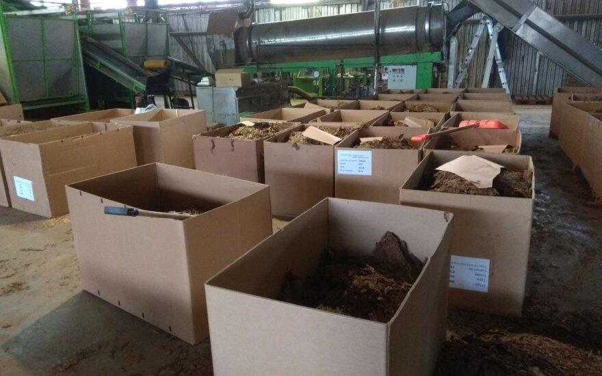 Grėsminga situacija: į Europą – tabakas iš Lietuvos šešėlinių įmonių