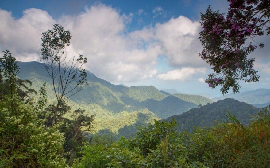 Sera do Maras - rytinis Brazilijos plokščiakalnio pakraštys