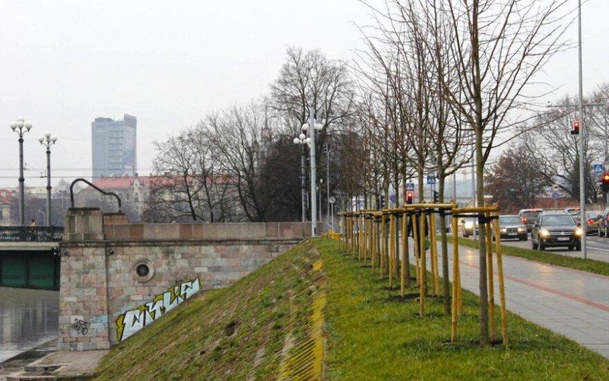 Žaliasis tiltas su vamzdžiu