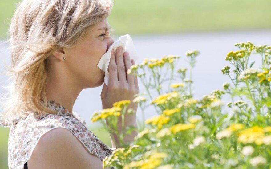Šienligė ar peršalimas?