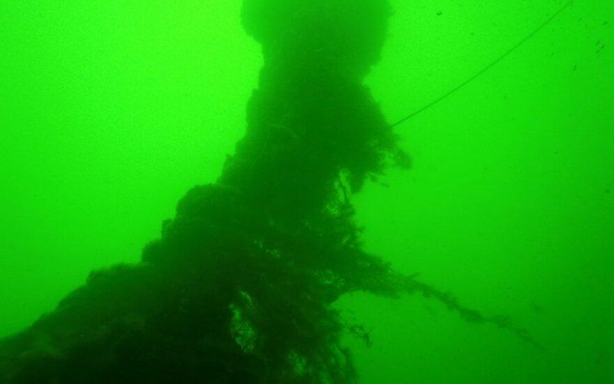 Baltijos jūroje rasta cheminio ginklo