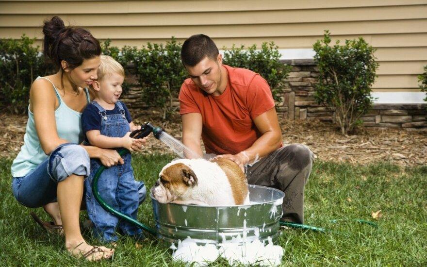 Šunų dresuotoja patarė, kaip prižiūrėti augintinius vasarą