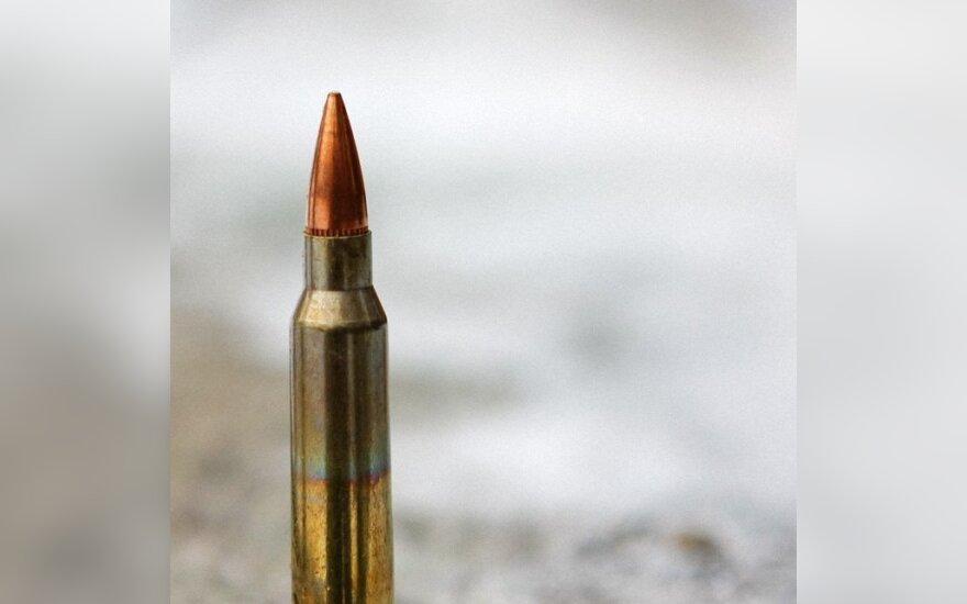 Giraitės ginklų gamyklos ateitis - nuoma arba koncesija