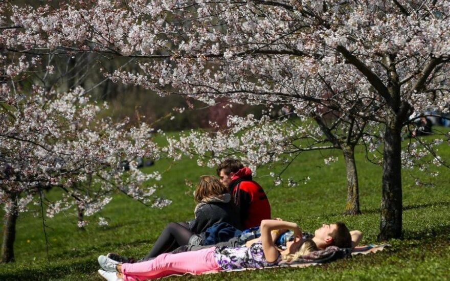 Balandžio orų prognozė: bus dar viena šilumos banga