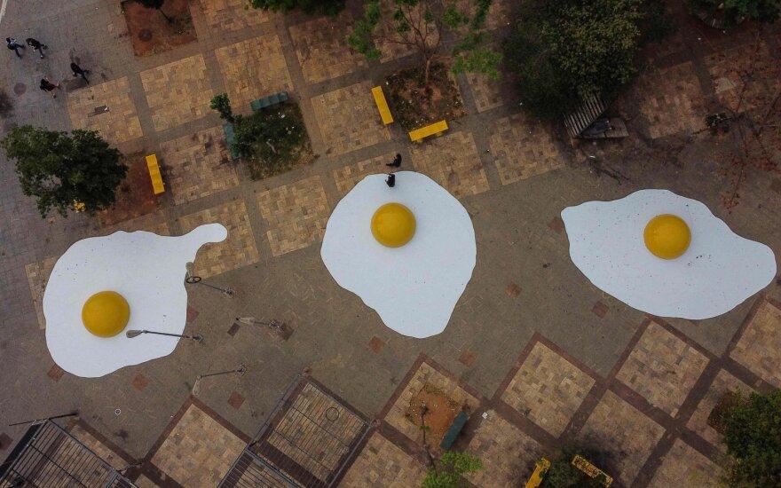 Meno instaliacija Brazilijoje skira klimato kaitos problemai